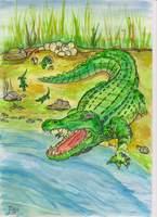 krokodil2